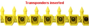 Transponders Inserted