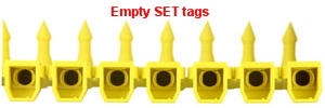 Empty SET tags