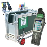 EID Sheep Weigh Crate (with EID reader and Stock Recorder)
