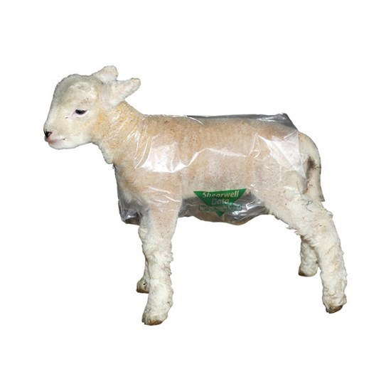 Picture of Shearwell Clear Lamb Macs - 100 Pack