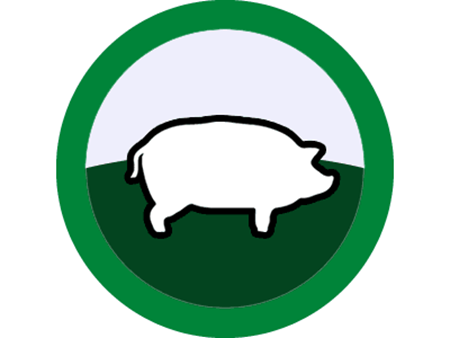 Picture for category Pigs