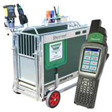 Picture of EID Sheep Weigh Crate (with EID reader and Stock Recorder)