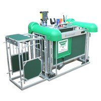 EID Sheep Automatic Drafting Crate without Stock Recorder