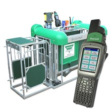 Picture of EID Sheep Automatic Drafting Crate with Stock Recorder